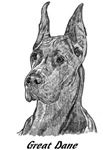 Great Dane - 4 images