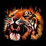 Fire Power Tiger