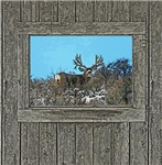 Old Cabin Window