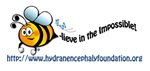 Bee-lieve in the Impossible: vertical design