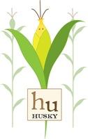 Corn Husky