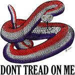 The Gadsen Snake