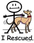 Dogs-Greyhound Adoption