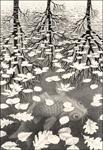 Escher Three Worlds