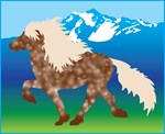 Silver dapple Icelandic Horse products
