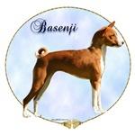 Basenji Portrait