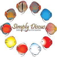 SimplyDiscus 2015 Round