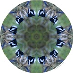Variegated Fairy-wren Mandala