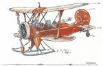 Waco Ski Plane