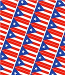 Puerto Rico/Puerto Rican Flag / Boricua/Nuyorican