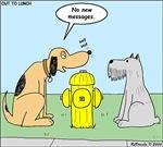 Dog Messaging