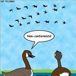 Geese Nonconformists