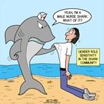 Male Nurse Shark Attitude