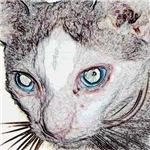LabRat the Wonder Cat