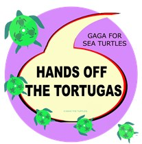 HANDS OFF THE TORTUGAS ( SEA TURTLES)