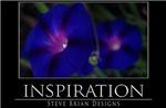 INSPIRATION10