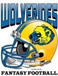 FFL Wolverines Helmet