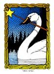 'Swan Magic' Color