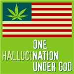 One HallucinNation