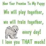 New - New Year Promise