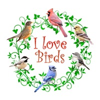 <b>I LOVE BIRDS</b>