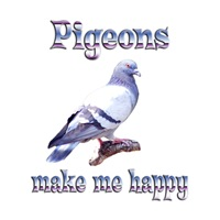 <b>PIGEONS MAKE ME HAPPY</b>