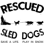 Rescued Sled Dogs