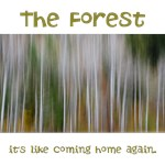 The Forest- Its like coming home