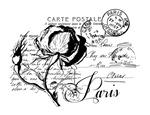 Paris Rose Carte Postale