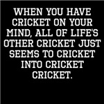 When You Have Cricket On Your Mind