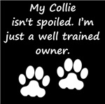 Well Trained Collie Owner