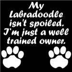 Well Trained Labradoodle Owner