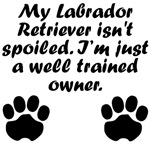 Well Trained Labrador Retriever Owner