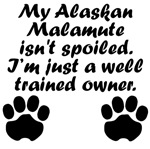 Well Trained Alaskan Malamute Owner