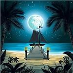 Moonlight on Beach