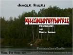 PSDB Buhl Pit Jungle Swing