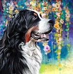 Bernese Mountain Dog Painting