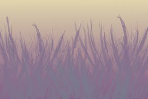 Violet Whispers