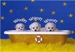 3 little woofs