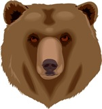 Brown Bear - Grizzly head symbol