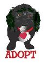 Adopt a Dog 1