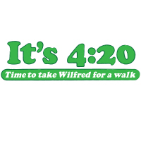 It's 4:20 - time to take Wilfred for a walk