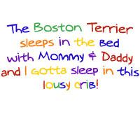 Babies Sleep in the Crib!