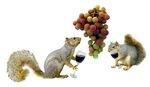 Squirrels Wine Tasting