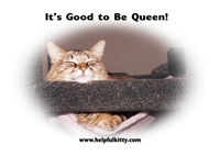 Queen Helpful Kitty