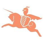 Orange Knight Pony