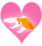 Goldfish Love