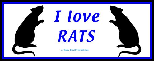 RAT T-SHIRTS & GIFTS