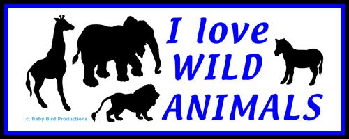 WILD ANIMALS T-SHIRTS & GIFTS