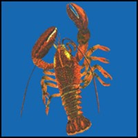 LOBSTER T-SHIRTS & GIFTS
